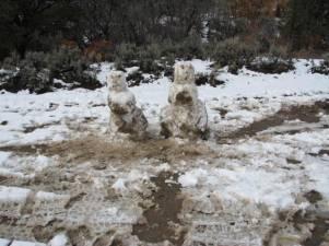 Snow women
