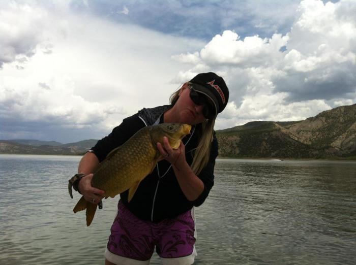 Bow huntress arrows a carp bowfishing