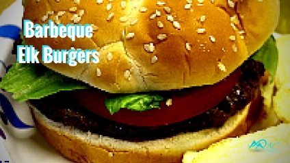 Elk-burger-recipe-Mias-Motivations