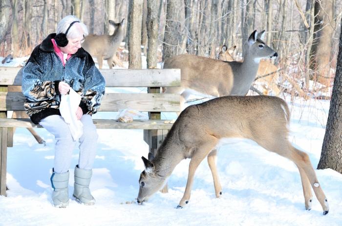Elderly Woman Feeding Deer