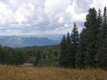Scenic areas with excellent wildlife habitat have been protected in Southwest Colorado thanks to new conservation easements near Dolores.