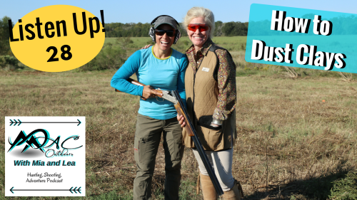 028 How to Dust Clays hz